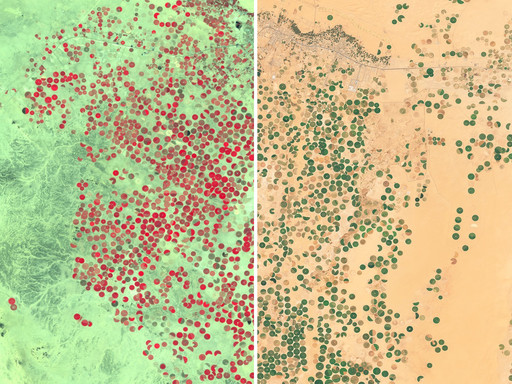 Examples for different usecases of Sentinel-2 data